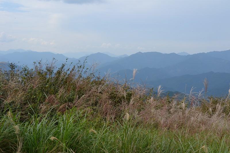 ゆとりすとパークおおとよは四国山脈を眺めれる